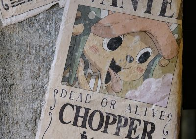 Chopper Wanted for only $100